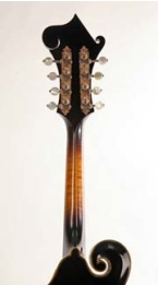 Fretmentor's Mandolin Studio is for mandolin students and players